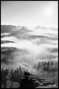 Lagervaror egen produktion Foggy Forest Black & White I - 50x70 cm Poster