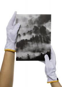 Guidegloves Katoenen handschoenen voor foto's
