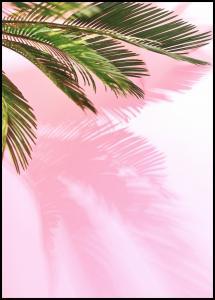 Lagervaror egen produktion Palm Leaf Poster