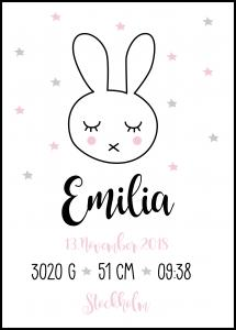 Personlig poster Baby Rabbit - Pink