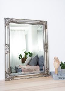 Artlink Spiegel Bologna Zilver 50x70 cm