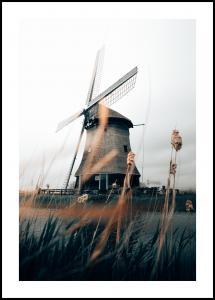 Bildverkstad Dutch Windmill Poster