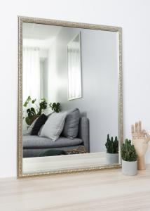 Artlink Spiegel Nost Zilver 50x70 cm