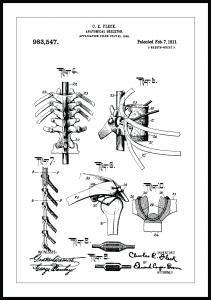 Bildverkstad Patenttekening - Anatomisch skelet III Poster
