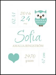 Personlig poster Owl Birth Poster Turquoise