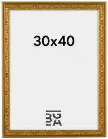 Artlink Kader Nostalgia Goud 30x40 cm