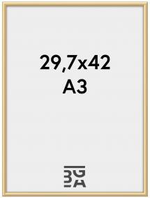 Walther Kader New Lifestyle Acrylglas Goud 29,7x42 cm (A3)