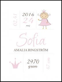 Personlig poster Princess Birth Poster Pink