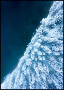 Bildverkstad Frosty Forest Poster